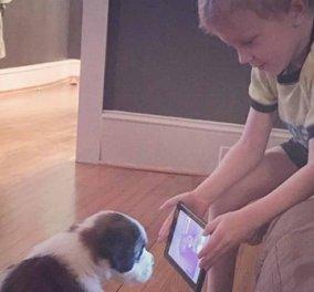 Το γύρο του διαδικτύου κάνουν οι φωτό με 4χρονο που πάσχει από βαριά μορφής αλλεργία να εκπαιδεύει το κουτάβι του  - Κυρίως Φωτογραφία - Gallery - Video