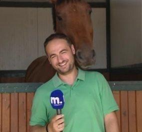 Τρελό γέλιο : Άλογο ερωτεύεται Έλληνα δημοσιογράφο και γίνεται το έλα δεις στο Internet - Κυρίως Φωτογραφία - Gallery - Video