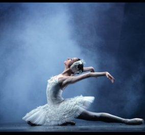 Τo Russian Ballet Theater παρουσιάζει το αριστούργημα του Tchaikovsky ''Η Λίμνη των Κύκνων'' - Περιοδεία σε όλη την Ελλάδα - Κυρίως Φωτογραφία - Gallery - Video