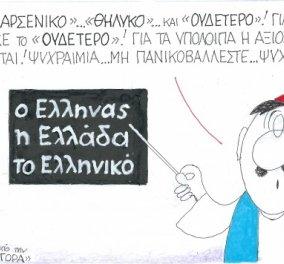 KΥΡ: Το ''ουδέτερο'' Ελληνικό πουλήθηκε - Για αρσενικό & θηλυκό η αξιολόγηση συνεχίζεται - Κυρίως Φωτογραφία - Gallery - Video