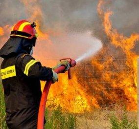 """""""Ο σύγχρονος Νέρων"""": 37χρονος έβαλε 12 πυρκαγιές στον Ασπρόπυργο  - Κυρίως Φωτογραφία - Gallery - Video"""