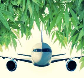Αεροπλάνο προς Κρήτη έκανε αναγκαστική προσγείωση επειδή μύριζε κάνναβη - Τι βρέθηκε τελικά; - Κυρίως Φωτογραφία - Gallery - Video