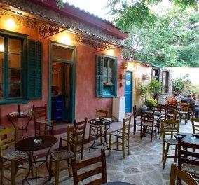 Φτηνά μεζεδάκια σε 5 υπέροχες αθηναϊκές αυλές - Δείτε τα! - Κυρίως Φωτογραφία - Gallery - Video