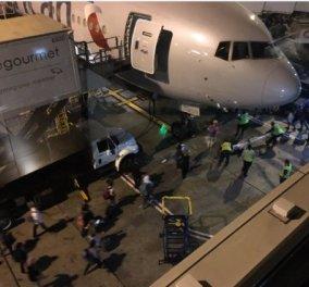 Πανικός στο Λος Άντζελες: Πληροφορίες για πυροβολισμούς ''άδειασαν''' το αεροδρόμιο - Κυρίως Φωτογραφία - Gallery - Video