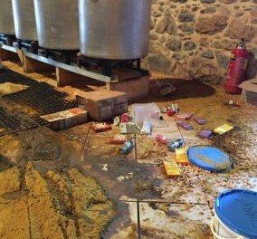 """""""Γυαλιά καρφιά"""" τα έκαναν στην Χίο: Έσπασαν κοινωνική κουζίνα για τους πρόσφυγες - Φώτο & βίντεο  - Κυρίως Φωτογραφία - Gallery - Video"""