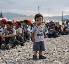 Aποκάλυψη βόμβα της Bild: Ελάχιστος ο αριθμός  που ήρθαν στην Ελλάδα να βοηθήσουν για τους πρόσφυγες - Κυρίως Φωτογραφία - Gallery - Video