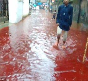 Οι δρόμοι πλημμύρισαν με αληθινό αίμα: Ανατριχιαστικές εικόνες από την σφαγή 100.000 ζώων στο Μπαγκλαντές  - Κυρίως Φωτογραφία - Gallery - Video