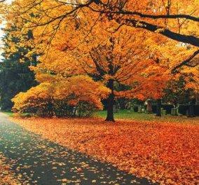 Μπαίνει και επίσημα το φθινόπωρο - Την Πέμπτη η φθινοπωρινή ισημερία - Κυρίως Φωτογραφία - Gallery - Video