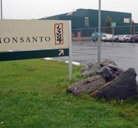 Η συμφωνία της Χρονιάς: Η Bayer εξαγόρασε την Monsanto για 66 δισ δολάρια  - Κυρίως Φωτογραφία - Gallery - Video