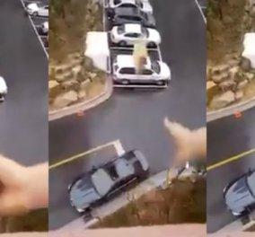 Βίντεο: Αφηρημένος σύζυγος ξέχασε να πάρει κολατσιό - Η γυναίκα του με τρίποντο το πετάει μέσα στο αμάξι - Κυρίως Φωτογραφία - Gallery - Video