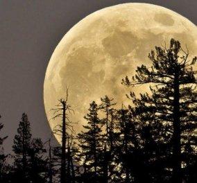 """Το αποψινό φεγγάρι είναι... """"Super""""! Πιο κοντά στη Γη και 30% πιο λαμπερό! - Κυρίως Φωτογραφία - Gallery - Video"""