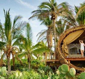 Σίγουρα είναι το πιο εξωτικό κτίριο στον κόσμο: Ιδού το Playa Viva στο Μεξικό - Φτιαγμένο όλο από μπαμπού! - Κυρίως Φωτογραφία - Gallery - Video