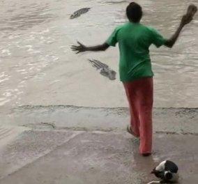 Βίντεο για πολύ γέλιο: Θεούλα τρόμαξε τεράστιο κροκόδειλο με μια... σαγιονάρα - Κυρίως Φωτογραφία - Gallery - Video