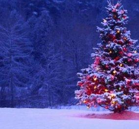 "Vintage Story: H ""εγκυκλοπαίδεια"" των γιορτών - Πώς ξεκίνησαν τα ρεβεγιόν, οι ρουλέτες, τα χριστουγεννιάτικα δέντρα, τα λαμπάκια... - Κυρίως Φωτογραφία - Gallery - Video"