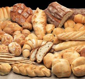 Good news: Δωρεάν ψωμί κάθε μέρα σε ανέργους, πολύτεκνους, άπορους, όλες τις γιορτές από τον Βενέτη - Κυρίως Φωτογραφία - Gallery - Video