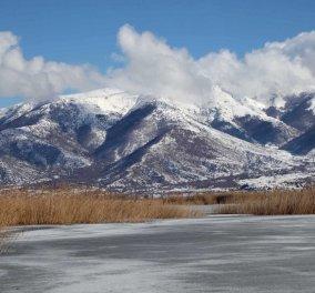 Μαγευτικά στιγμιότυπα: Οι παγωμένες λίμνες της Πρέσπας & της Καστοριάς σε απίθανα κλικς - Κυρίως Φωτογραφία - Gallery - Video