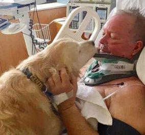 Η γενναία σκυλίτσα Κέλσι έσωσε τη ζωή του αφεντικού της - Ακούραστη, τον κράτησε ζεστό μέσα στην παγωνιά για 20 ώρες - Κυρίως Φωτογραφία - Gallery - Video