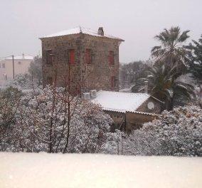 """Χιονιάς """"Αριάδνη"""": Στα λευκά ξύπνησε η Λέσβος (φωτό) - Έπεσαν χιόνια μετά από χρόνια μέσα στην Πάτρα!  - Κυρίως Φωτογραφία - Gallery - Video"""