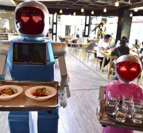 McKinsy - PwC συμφωνούν: Τα ρομπότ θα πάρουν τις δουλειές μας- με χαμηλή μόρφωση ακόμη πιο ψηλά τα ποσοστά - Κυρίως Φωτογραφία - Gallery - Video