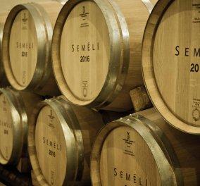 Made In Greece- Ρεκόρ διακρίσεων για τα κρασιά SEMELI: 40 βραβεία σε 7 διεθνείς διαγωνισμούς - Κυρίως Φωτογραφία - Gallery - Video