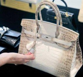 Τσάντα Hermes πουλήθηκε 380.000 δολάρια από κροκόδειλο! Παγκόσμιο ρεκόρ - Κυρίως Φωτογραφία - Gallery - Video
