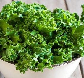 """Λαχανίδα: Η αδερφή του σέσκουλου έγινε ως """"kale"""" παγκόσμιο trend & υστερία στην διατροφή - Κυρίως Φωτογραφία - Gallery - Video"""