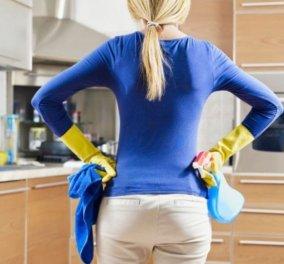 4 τρόποι για να απαλλαγείτε από τα ενοχλητικά έντομα στο σπίτι - Κυρίως Φωτογραφία - Gallery - Video