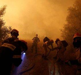Πολύ υψηλός ο κίνδυνος πυρκαγιάς για σήμερα - Δείτε τον χάρτη - Κυρίως Φωτογραφία - Gallery - Video