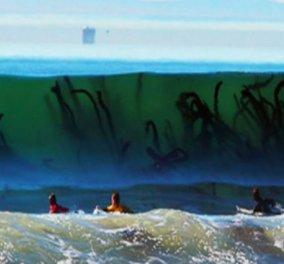 Εσείς θα τολμούσατε να κολυμπήσετε σ' αυτές τις παραλίες; Φωτό - Κυρίως Φωτογραφία - Gallery - Video