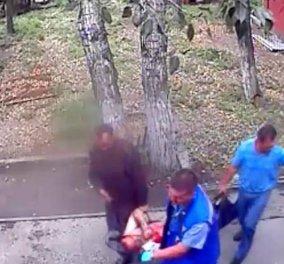 Βίντεο: η στιγμή που ένας πιωμένος άνδρας σκαρφαλώνει για να ταΐσει αρκούδα & του επιτίθεται... - Κυρίως Φωτογραφία - Gallery - Video