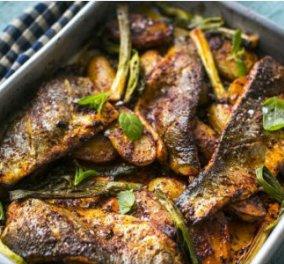 Αυγουστιάτικα ψάρια στον φούρνο – σκουμπρί, σαφρίδια, ζαργάνες, τονάκι από την εξπέρ Άρτεμη Τζίτζη - Κυρίως Φωτογραφία - Gallery - Video