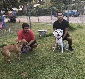 Συγκινεί ο φοιτητής που αψηφώντας τους κινδύνους έσωσε μέσα στον τυφώνα γάτες & σκύλους – φωτό - Κυρίως Φωτογραφία - Gallery - Video