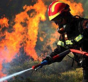 47 πυρκαγιές το τελευταίο 24ωρο - Πολύ υψηλός ο κίνδυνος και σήμερα - Κυρίως Φωτογραφία - Gallery - Video