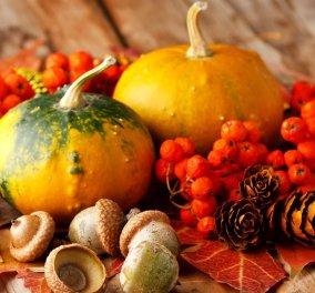 Αυτές είναι οι 10 κορυφαίες φθινοπωρινές τροφές που θα αγαπήσετε - Κυρίως Φωτογραφία - Gallery - Video
