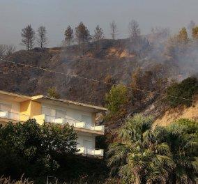 Χαλκιδική: Μάχη με τις φλόγες στη Κασσάνδρα - Τουλάχιστον 2 σπίτια καταστράφηκαν  - Κυρίως Φωτογραφία - Gallery - Video