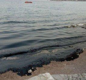Σαλαμίνα: Μεγάλη η περιβαλλοντική και η οικονομική ζημιά - Τουλάχιστον 27 κυβικά απόβλητα έχουν περισυλλεγεί - Κυρίως Φωτογραφία - Gallery - Video