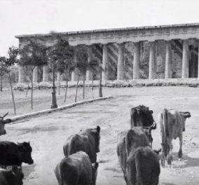Δείτε την Αθήνα πριν από 100 χρόνια - Εντυπωσιακό βίντεο - Κυρίως Φωτογραφία - Gallery - Video