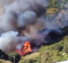 Στις φλόγες η Νάξος – Πυρκαγιά με πολλές εστίες ανάμεσα σε δύο χωριά - φωτό - βίντεο - Κυρίως Φωτογραφία - Gallery - Video