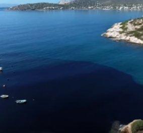 Το συγκλονιστικό βίντεο του BBC για τη ρύπανση του Σαρωνικού: Η πετρελαιοκηλίδα μετατρέπει σε μαύρο νησί τη Σαλαμίνα - Κυρίως Φωτογραφία - Gallery - Video