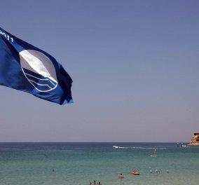 Υποστολή της «Γαλάζιας Σημαίας»: Σε ποια παραλία και για ποιο συγκεκριμένο λόγο αφαιρέθηκε - Κυρίως Φωτογραφία - Gallery - Video
