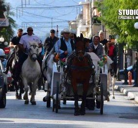 Good news: Πάμε Αργος για δωρεάν βόλτες με άμαξες & υπέροχα άλογα  - Κυρίως Φωτογραφία - Gallery - Video