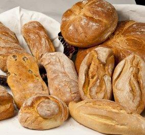 Αυτό είναι το πιο υγιεινό και ωφέλιμο για τον οργανισμό ψωμί  σύμφωνα με το Χάρβαρντ - Κυρίως Φωτογραφία - Gallery - Video
