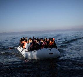 Επίθεση Μαξίμου στον δήμαρχο Λέσβου για τη διαχείριση του προσφυγικού  - Κυρίως Φωτογραφία - Gallery - Video