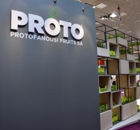 Μade in Greece η Proto που εξάγει φρούτα σε αλυσίδες κολοσσούς: Tesco, Coop Aldi , σε Αγγλία Ολλανδία, Χονγκ Κονγκ (ΦΩΤΟ) - Κυρίως Φωτογραφία - Gallery - Video