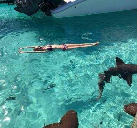 Eξωτικός ή εξοντωτικός μήνας του μέλιτος: Καρχαρίας άρπαξε την σύζυγο & ο άντρας της τη βιντεοσκοπούσε   - Κυρίως Φωτογραφία - Gallery - Video