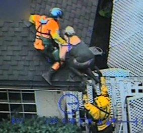 Βίντεο: Καρέ- καρέ η διάσωση οικογένεια με ελικόπτερο στην Καλιφόρνια- 17 νεκροί, 17 αγνοούμενοι μέσα στις λάσπες - Κυρίως Φωτογραφία - Gallery - Video