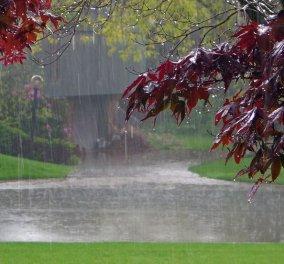Η εβδομάδα τελειώνει με χειμωνιάτικο σκηνικό- Νεφώσεις - βροχές και τοπικές χιονοπτώσεις - Κυρίως Φωτογραφία - Gallery - Video