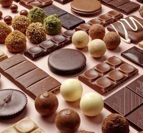 Θα ξεμείνουμε από σοκολάτα !!!!! Το 2050 Η κλιματική αλλαγή θα εξαφανίσει τα κακαόδεντρα (ΦΩΤΟ) - Κυρίως Φωτογραφία - Gallery - Video