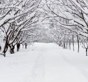 Ακραίο ψύχος στη ρωσική Άπω Ανατολή: Στους -68 βαθμούς η θερμοκρασία στη Σιβηρία - Κυρίως Φωτογραφία - Gallery - Video