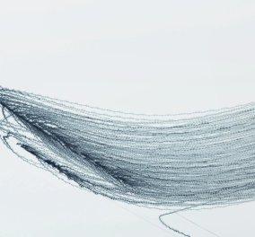 """""""Ονειρικές πτήσεις""""- Αν τα πουλιά άφηναν ίχνη στον ουρανό πως θα έμοιαζαν; - Δείτε τις μαγευτικές φωτο - Κυρίως Φωτογραφία - Gallery - Video"""